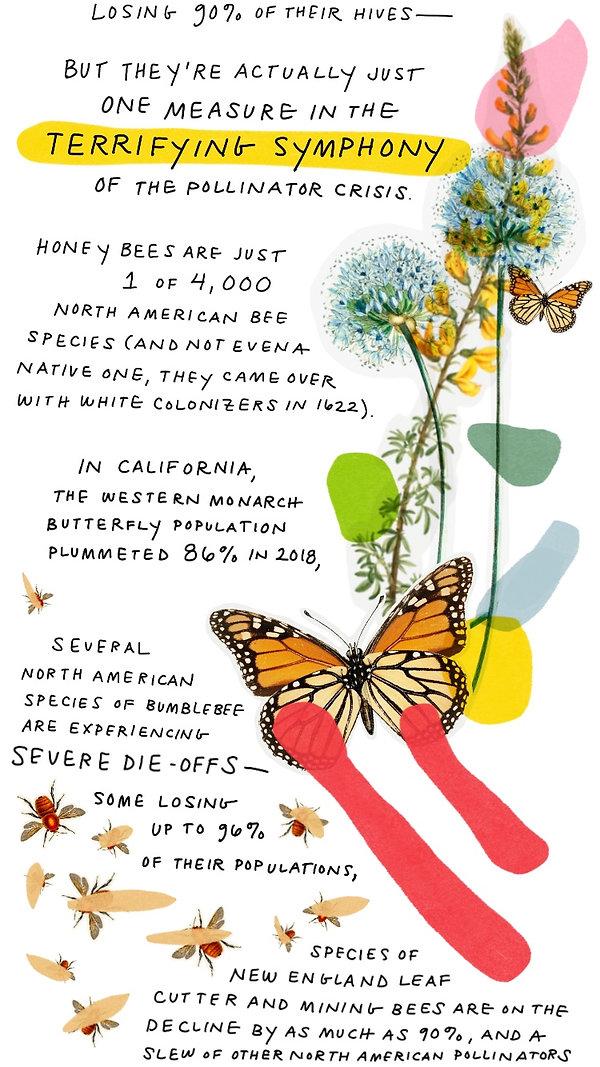 Pollinators-3.jpg