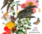 Pollinators-1.jpg