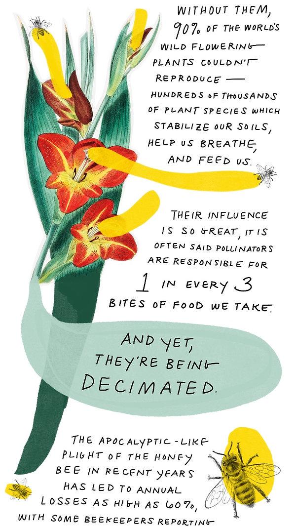 Pollinators-2.jpg
