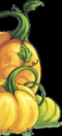 Tylers Pumpkin Patch