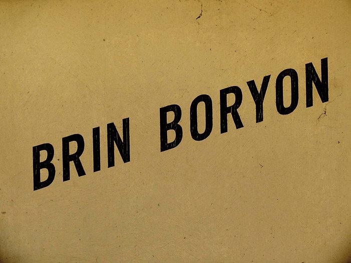 Brin borion.jpg