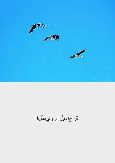 arabe -20 copie.jpg