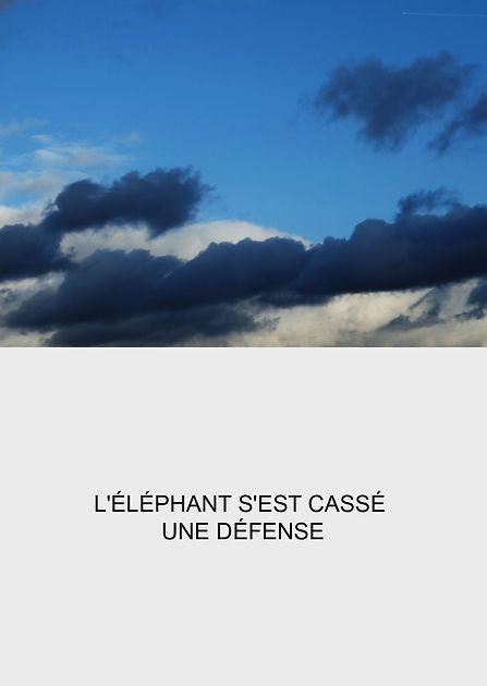 l'éléphant copie.jpg