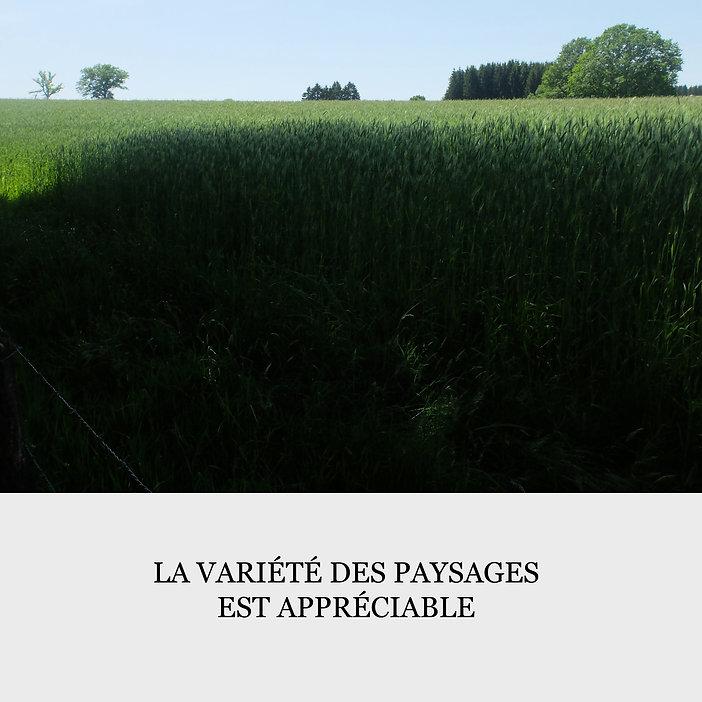la variété des paysages.jpg