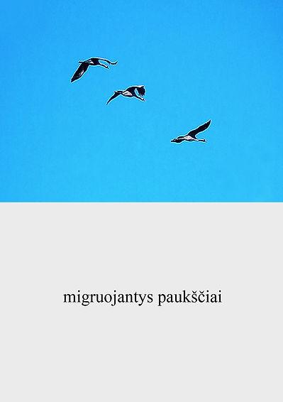 lituanien -20 copie.jpg