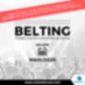SP BELTING (4).png