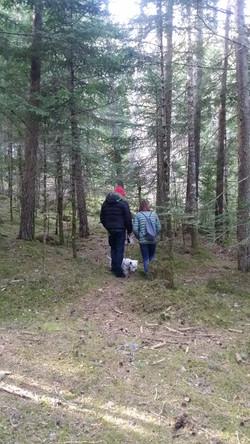 Tomando la atmosfera del bosque