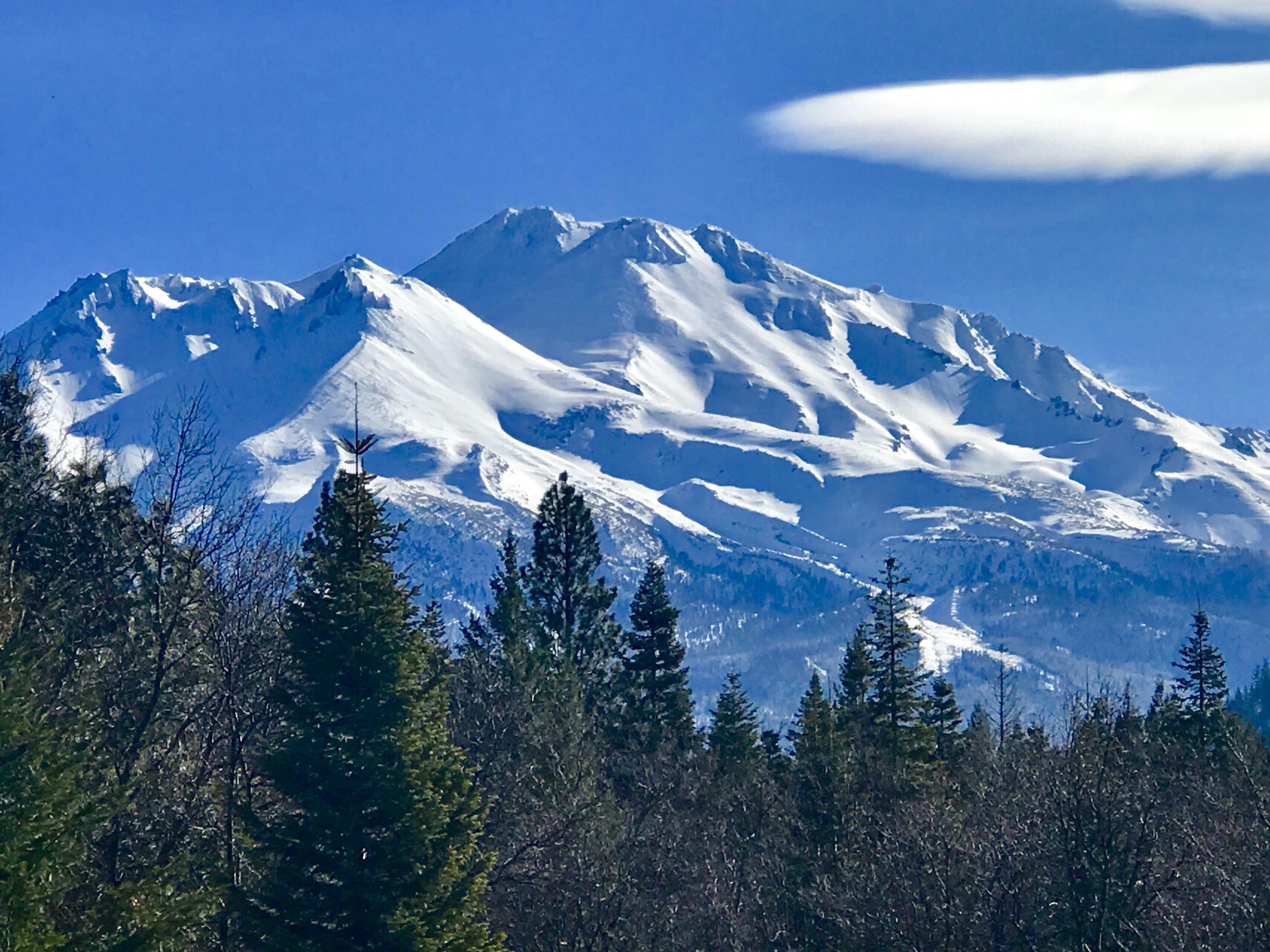 Mount Shasta viewed from the Sanctua