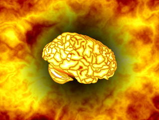 The Brain & Fire