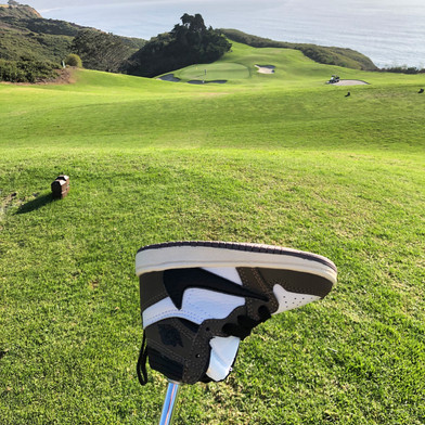 TS1 Putter Cover
