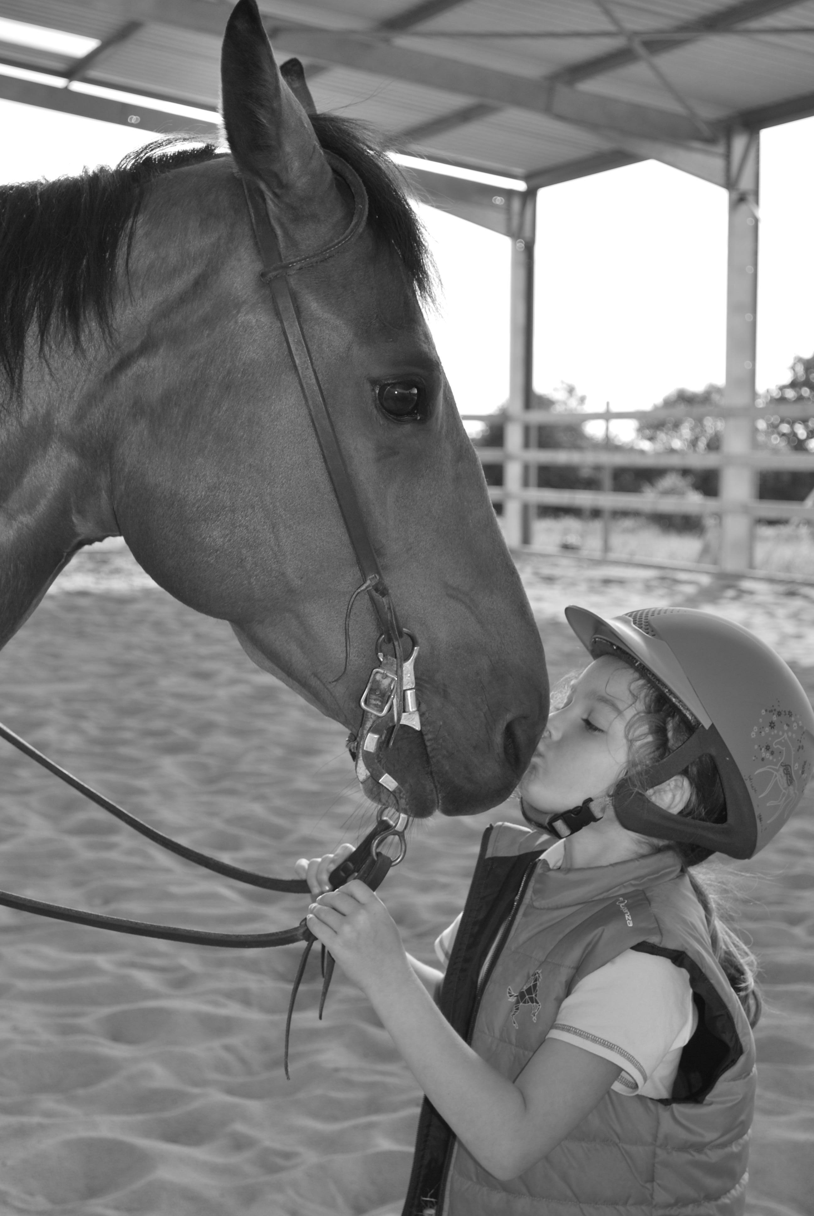 Cours d'équitation Manche,