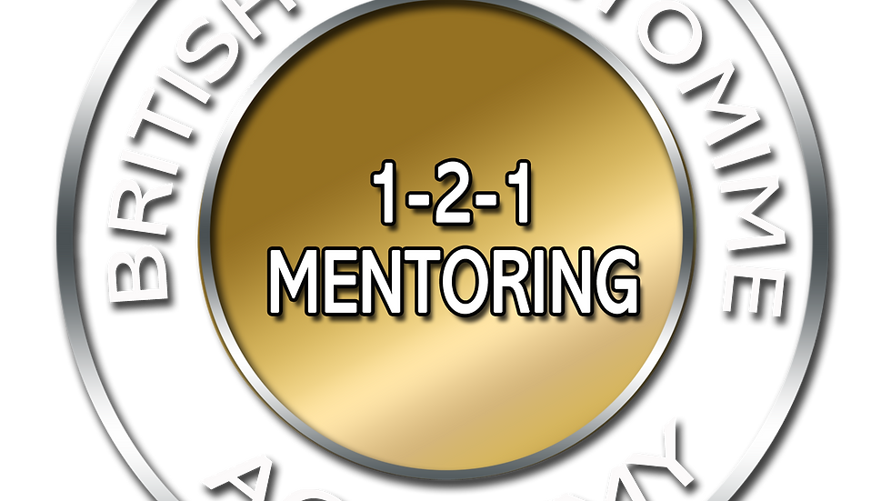 Individual Mentoring Workshop