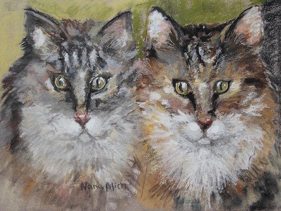 Rosanne's Cats