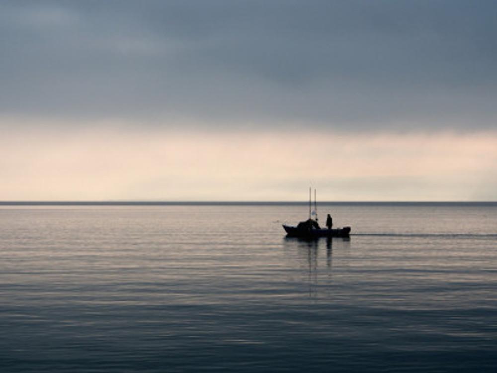 wpid-ian-prince_early-morning-fishing_akznrq.jpg.jpeg