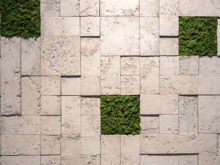 Castelatto investe em design biofílico com revestimento moss