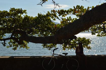 Ilhabela terá praias com Internet gratuita na alta temporada de 2018