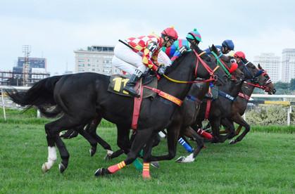 Jockey Club de São Paulo tem corridas de cavalo e food trucks aos sábados