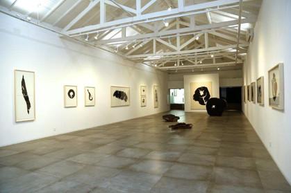 Exposição Impressão Vegetal, de Hugo França, na galeria Bolsa de Arte
