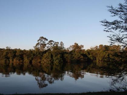 Na área do Parque Ecológico do Tietê cabem 11 Ibirapueras