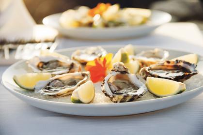Setembro é o mês das ostras no Ponta dos Ganchos