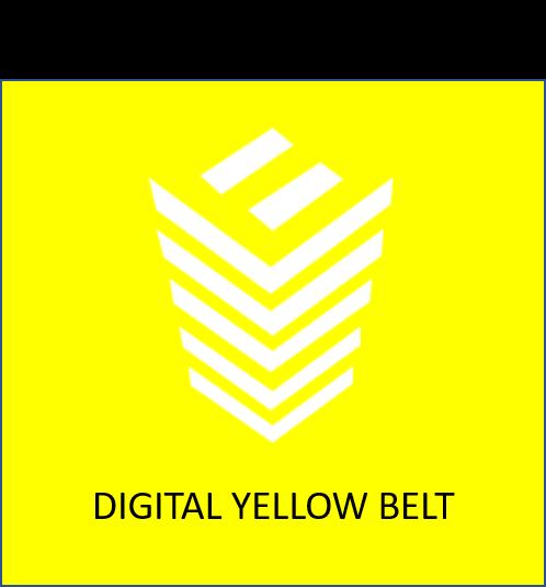 Digital Yellow Belt