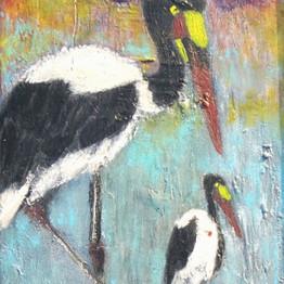 Bird-uganda_by-AMI-2020-1-5-med_edited.j