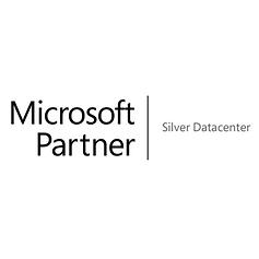 square-13-Microsoft Silver Partner Data