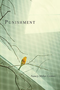 Gomez_Punishment_Cov-1200h.jpg
