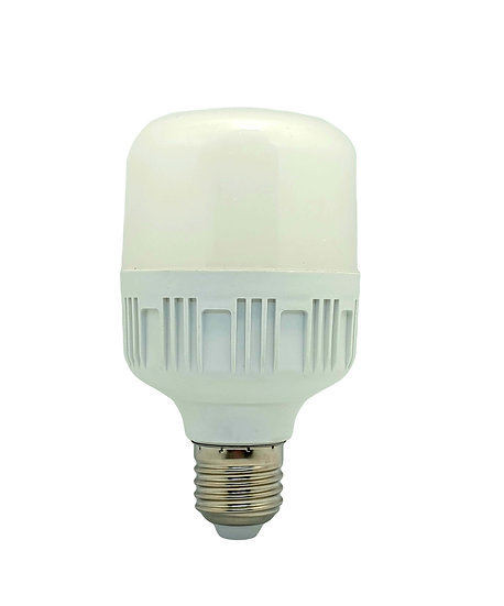 LED Handsome Bulb Daylight