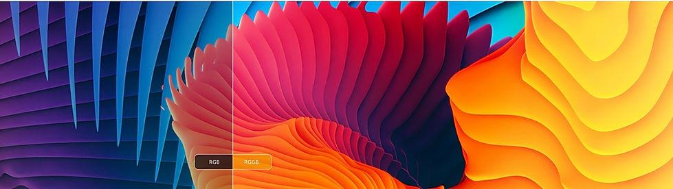 Vivid Colour.jpg