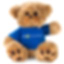 monthly-benefit-teddy-bear.png