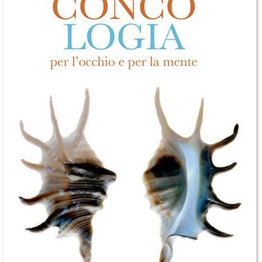 Concologia per l'occhio e per la mente - Fiorina Edizioni