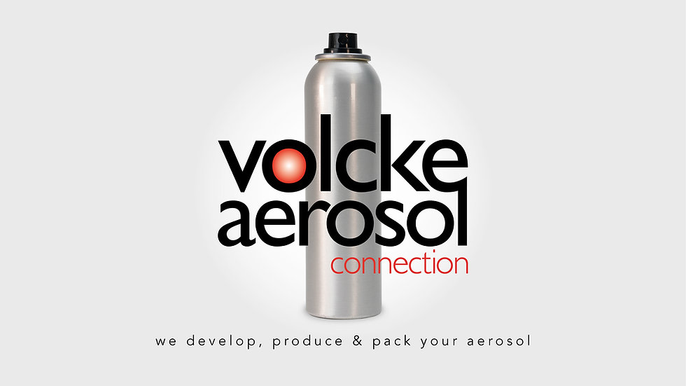 corporate-presentation-volcke-vac-2021-v