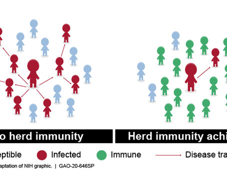 ¿Qué es la inmunidad de rebaño?