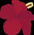 bunga raya.png