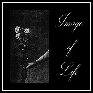 "Recensione: Image Of Life ""Attended By Silence"""
