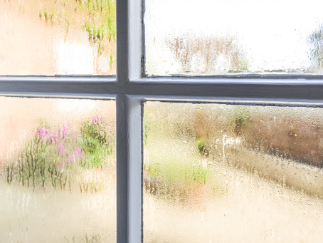 4 Ways to Lower Humidity in your Home