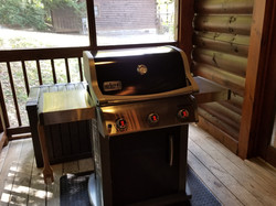 Grill on Back Porch