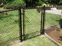 Black Vinyl Chain Link with Gate