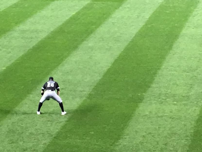 Avisail Garcia in left field, 9/1/2016.  D.Talbot.