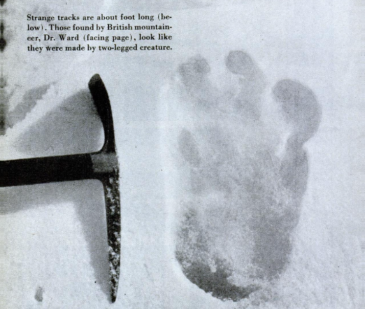 Supposed Yeti footprint photographed by the Hillary Expedition up Mt. Everest.