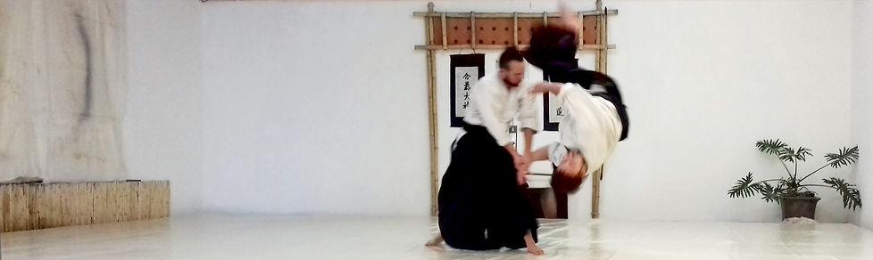 El Tamashī to Kokoro Dojo es una escuela de Aikikai Aikido tradicional y dinámicopara mayores de 12años de ambos sexos sin ánimo de lucro en San Miguel de Allende, GTO, México.