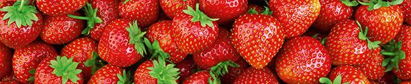m07_Erdbeeren
