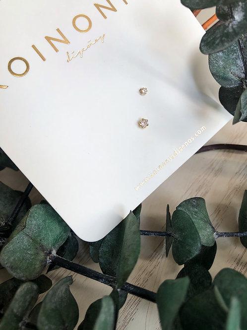 SET  zirconias abrazadas / Oro 10k