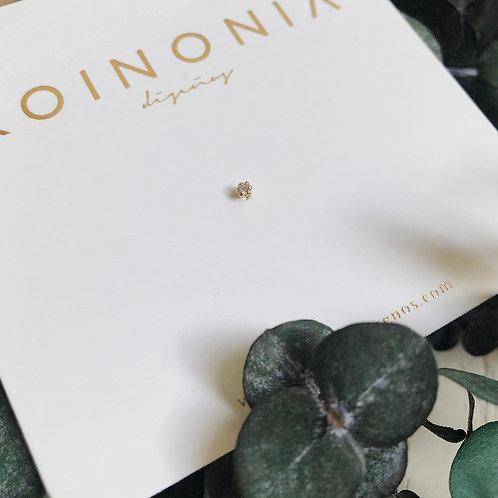 Zirconia abrazada / Oro 10k
