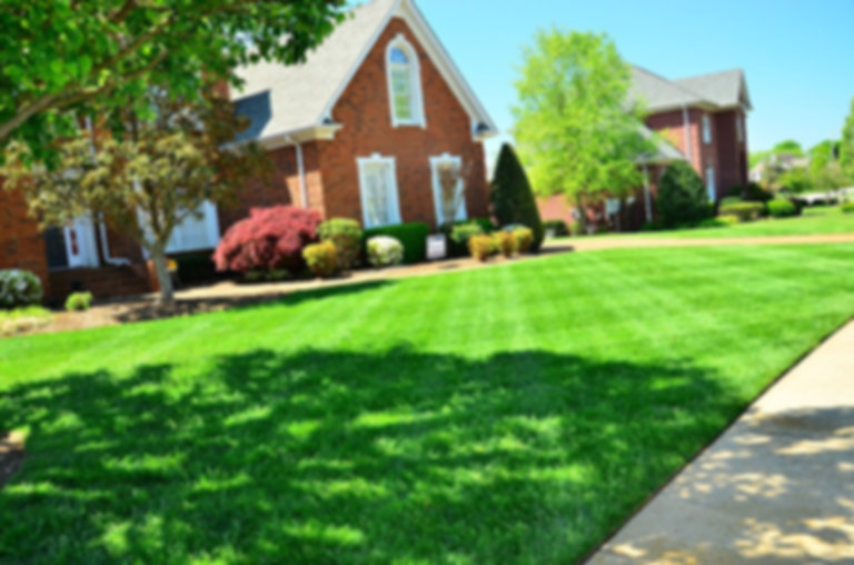 Maintaining a smooth and closely cut lawn, be it for aesthetic or practical reasons or because social pressure from neighbors and local municipal ordinances requires it, necessitates more organized and regular treatments. Usually once a week is adequate for maintaining a lawn in most climates. However, in the hot and rainy seasons of regions contained in hardiness zones greater than 8, lawns may need to be maintained up to two times a week.