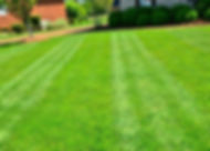 The scientific evidence clearly shows that a healthy lawn is good for the environment. Because it's around us every day, people don't think about the fact that a healthy turf generates oxygen for improved air quality.  Most homeowners don't realize noise and air pollution are reduced in most suburban areas because the grass ecosystem serves as a natural filter for the environment.