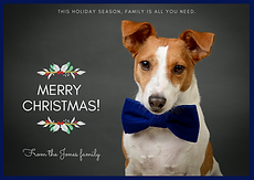 Lenny's Christmas Card (1).png