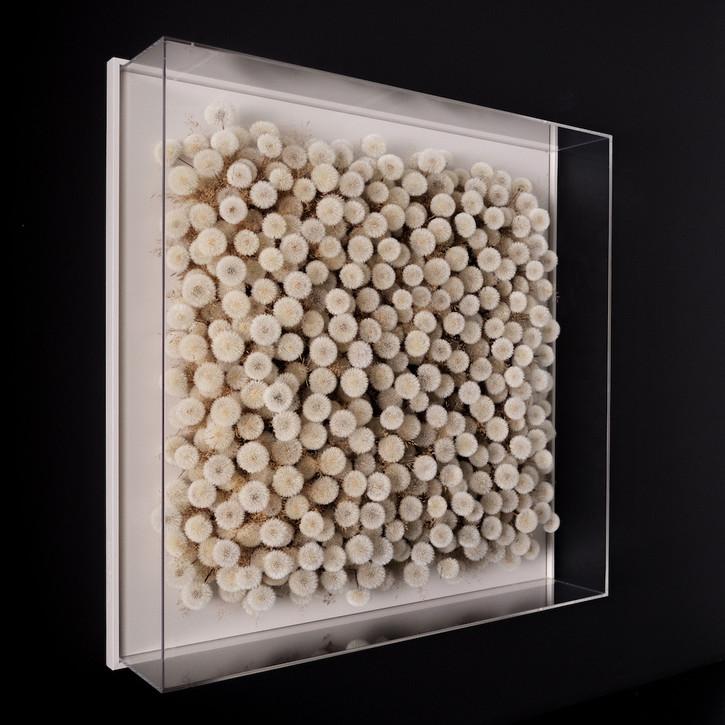 Hilde Trip Make a Wish 2020 Pusteblumen 100 x 100 cm