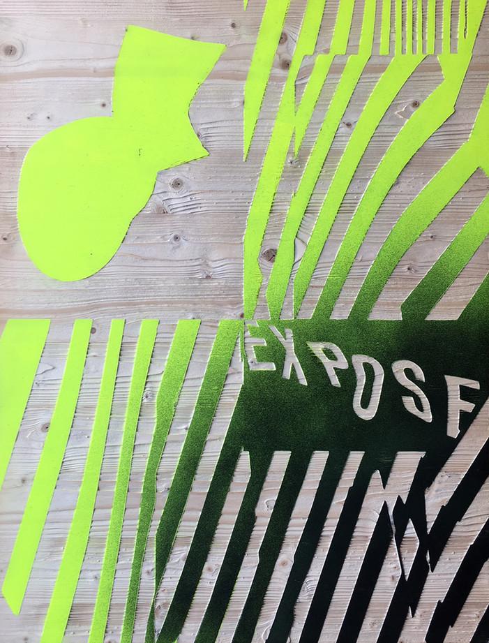 Kai Linke: BLASTED-Expose (in Kooperation mit Pixelgarten), 2011,  Holz mit Lack, gesandstrahlt, 100 x 75 x 1,9 cm